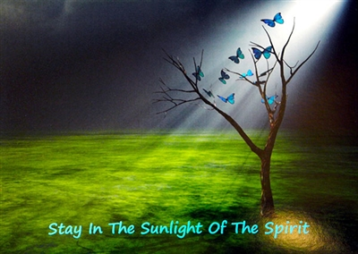 Stay in the Sunlight of the Spirit Recovery Card