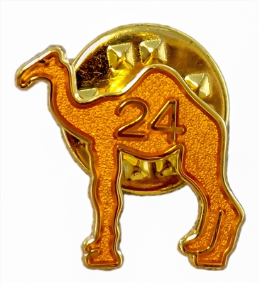 AA Camel w/ 24 Hours Lapel Pin