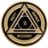 Purple/Black Diamond Recovery Medallion